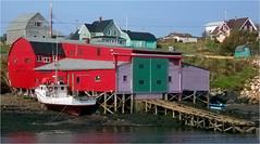 Nova Scotia: Cape St. Marys