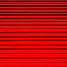 Simply Red...  11/365 by +Pattycake+