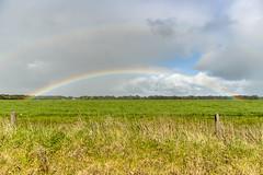 Victorian rainbow