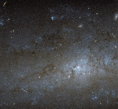 Hubble Peers Into the Center of a Spiral