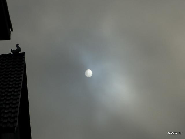 50-die Sonne war in den letzten Tagen nur so zu sehen