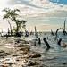 Holbox Island Mexico by Thomas Beckner