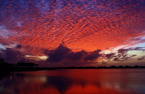 sunset red usa lake reflection fall nature beauty skyscape landscape colorful gallery unitedstates natural florida horizon ngc shoreline curve cloudscape levels firelight southflorida afterglow sawgrass naturephotography palmbeachcounty lakescape lightmyfire supershot fcf glassywaters 112314 diamondclassphotographer flickrdiamond cloudtexture absolutelystunningscapes naturescarousel dmslair thesunshinegroup artisticsunsetphotography quartasunset248