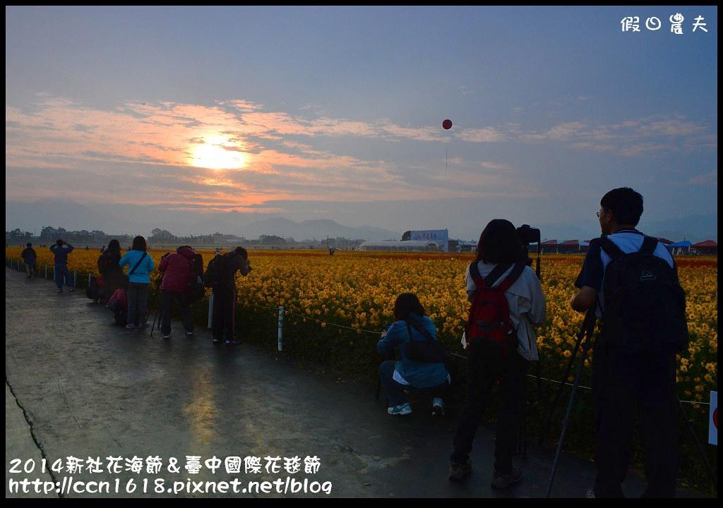 2014新社花海節&臺中國際花毯節DSC_4832