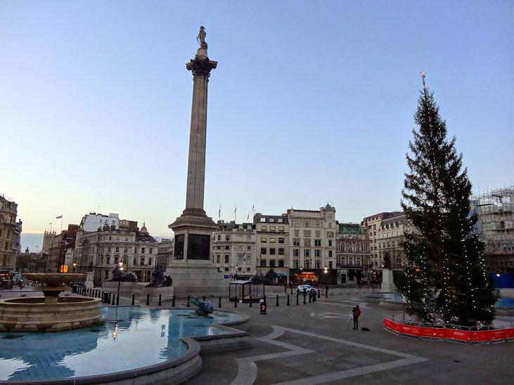 Trafalgar-Square-tree