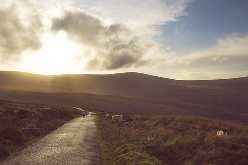 county roads take me home...