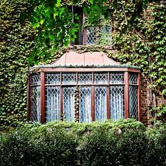 Window In The Gardens
