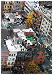 Manhattan rooftops