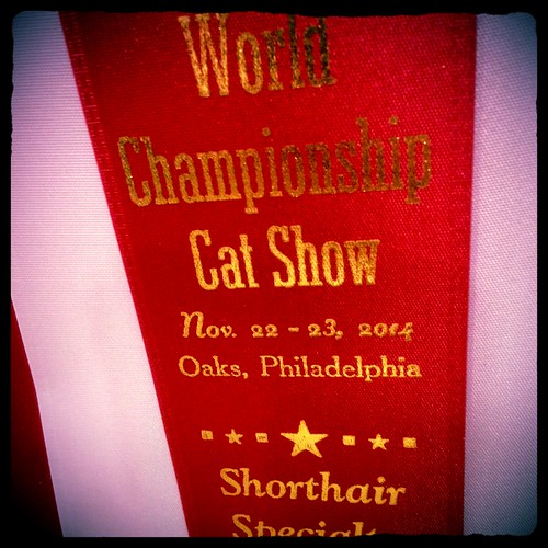 hipstaworldshow4