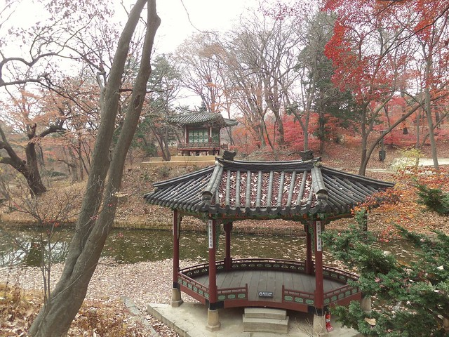 Secret Garden at Changdeokgung Palace