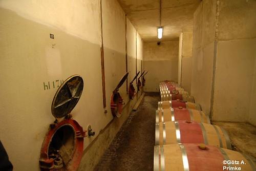 Trient_Trentino_Vini_nextgeneration_10_Dorigati_Nov_2014_011