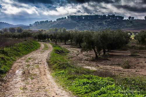 Camino y colina