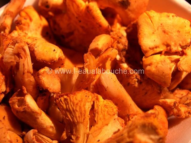 Cassolette de Girolles aux Olives Noires © Ana Luthi Tous droits réservés 002_GF