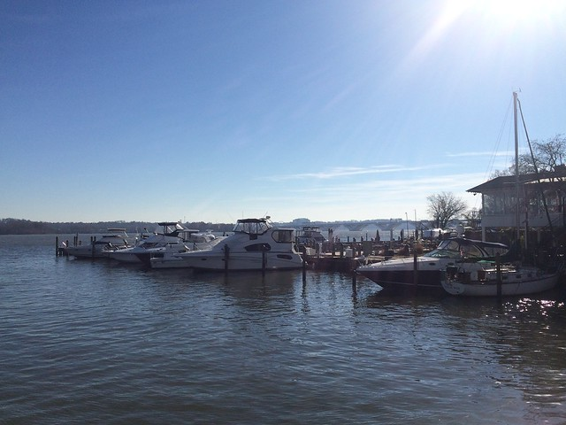 Old Dominion Boat Club