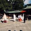 Wedding at 明治神宮