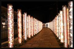 日本京都-嵐山夜燈.39