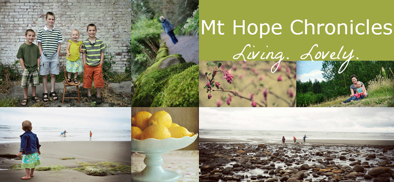 Mt Hope Chronicles Header July 2012