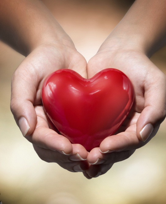 L-Carnitin tốt cho tim mạch