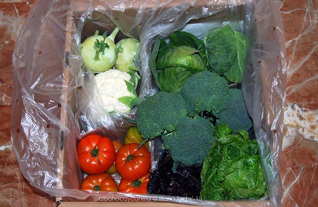 Freshvana - Verduras ecológicas