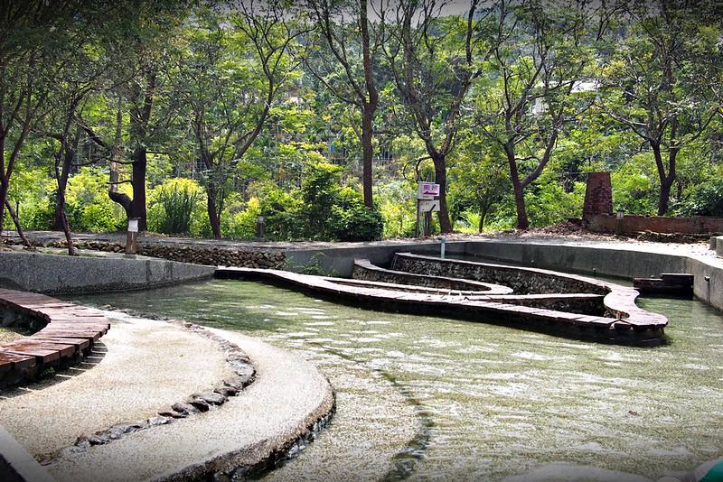8桃米親水公園(桃米生態區戲水池)
