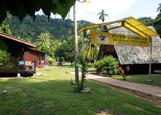 """<img src=""""accommodation-salang-tioman-malaysia.jpg"""" alt=""""Accommodation in Salang, Tioman, Malaysia"""" />"""