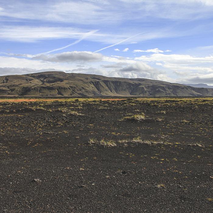 Iceland_Spiegeleule_August2014 187