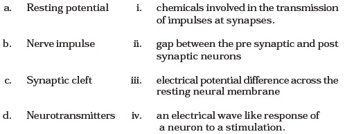 Class 11 Important Questions for Biology – Neural Control