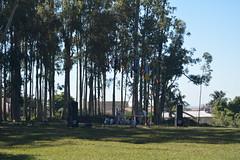 Acampamento Distrital 2014