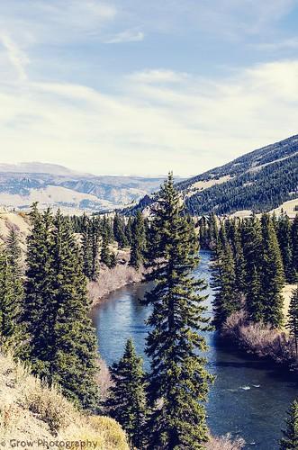 trees cliff mountain mountains water rio river grande colorado open wide meadow distance spaces