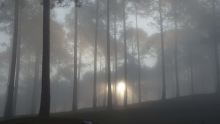 A ghost sun
