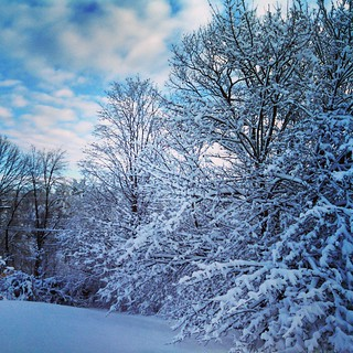 Happy Thanksgiving everyone! So #thankful we still have electricity! #snow #thanksgiving #newhampshire #trees #clouds #sky #firstsnow #newengland #winterwonderland