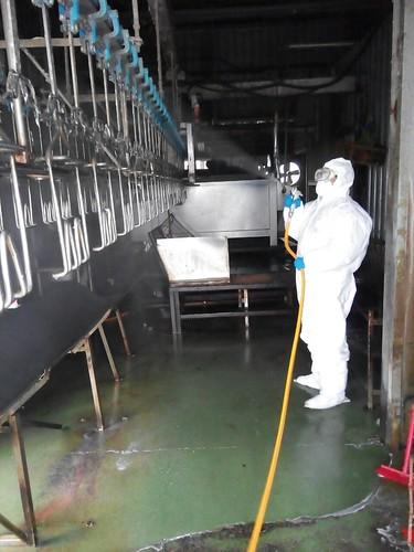 飼料廠列防疫重點,進行消毒。(圖片來源:宜蘭縣政府)