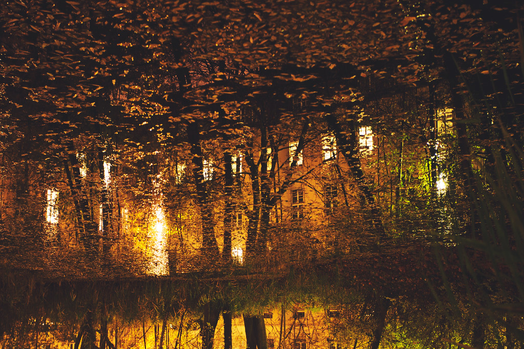 135/365 - autumnal reflection