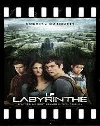 Le labyrinthe [FRENCH][BDRIP]