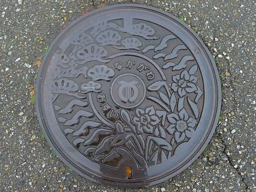 Nakagawa Tokushima, manhole cover (徳島県那賀川町のマンホール)