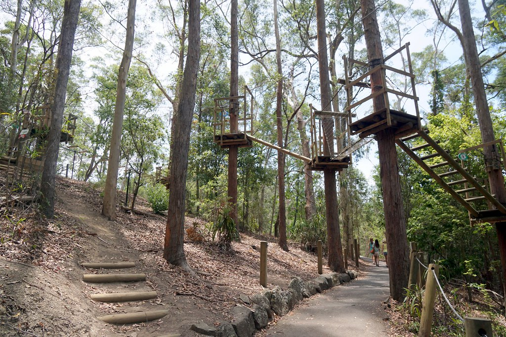 Currumbin Wildlife Sanctuary - obstacle course-001