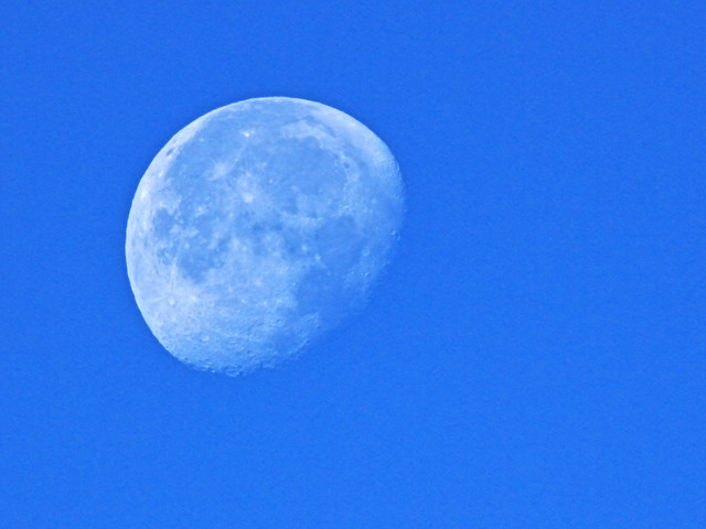 Moon 20141210