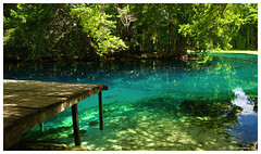 Vanuatu: Amazing blue hole