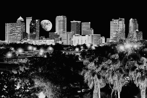 city urban moon building skyline skyscraper tampa office downtown realestate tampabay florida palmtrees metropolis residential metropolitan sunshinestate bushgardens commericalproperty hillboroughcounty usayborcity