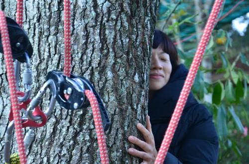 擁抱大樹。圖片來源:黃淑玲