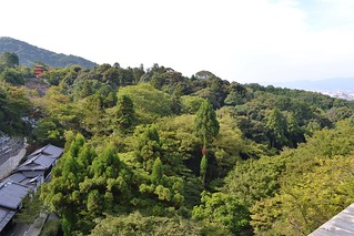 Forests around Kiyomizu Temple