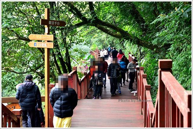十分瀑布公園眼鏡洞瀑布003-DSC_0552
