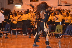 017 Whitehaven High School Band