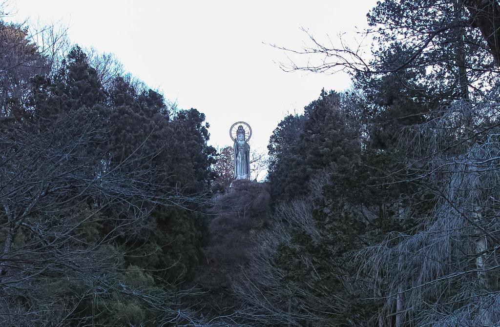 山を登るとチラチラ護国観音が見える