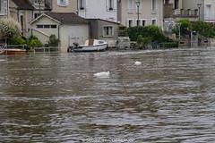 Inondation a Nemours-13