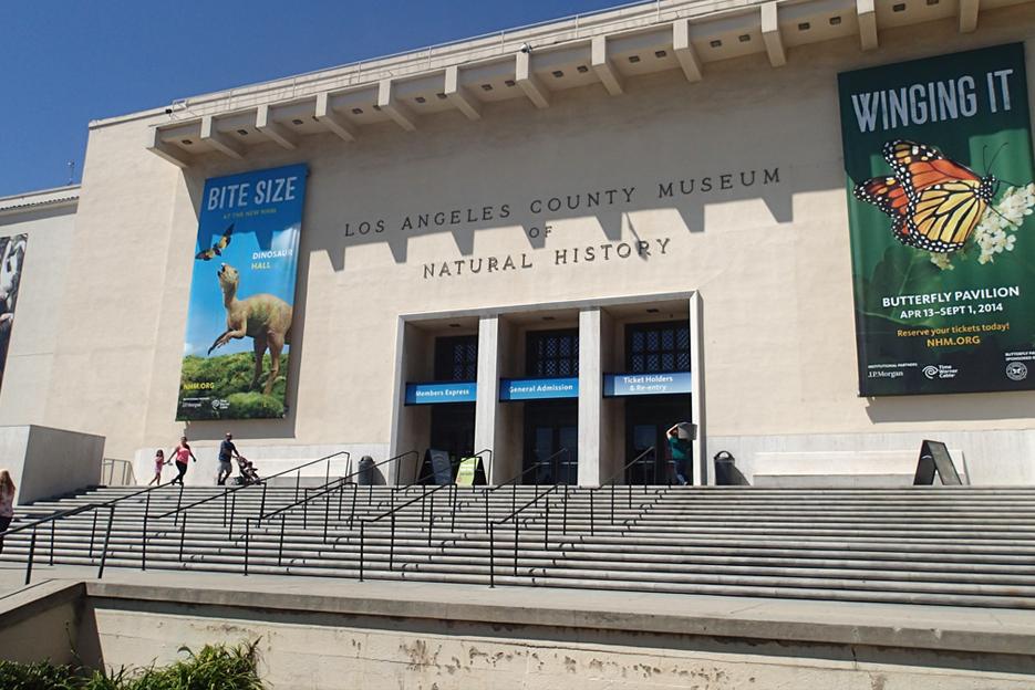 082114_naturalHistoryMuseum03