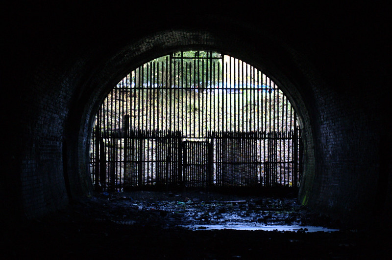 Looking out north portal of Balgray Tunnel