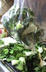Stir-Fried Bok Choy with Oyster Sauce and Garlic