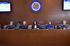 2014 NOV 19 Special Meeting of the Permanent Council