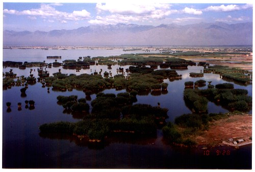 19960710-Ningxia-Sand-Islands-br